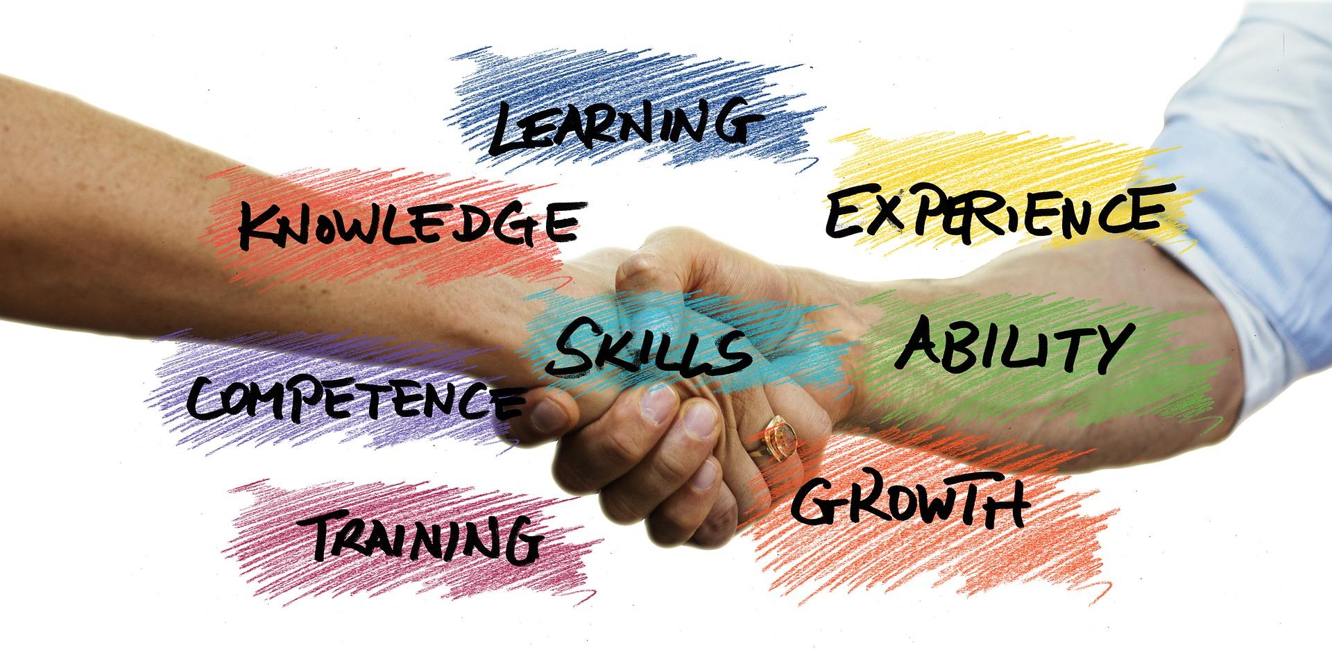 Psicoeducación, Formación de profesionales, Formación de co-terapéutas